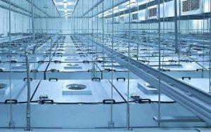 Lắp đặt hệ thống khung treo FFU (Fan Filter Unit) trong phòng sạch.